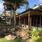 Mama's Fish House