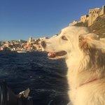 Foto de The Port of Corricella
