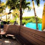Casey Key Fish House - Osprey, FL