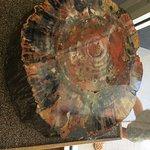 Painted Desert Visitor Centerの写真