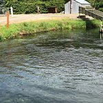 Foto de Rapid River Fish Hatchery