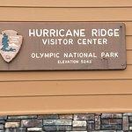 Hurricane Ridge 사진