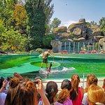 Фотография Зоопарк Будапешта