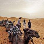 Photo of Explore Sahara Tours