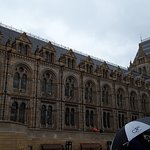 Natural History Museum on rainy day
