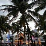 Ocean Drive Foto