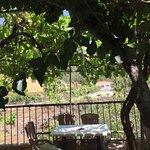 Billede af Casa Pana