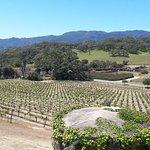 Sonoma Valley resmi