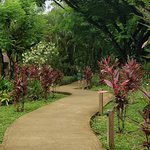 One of many gorgeous pathways around the property