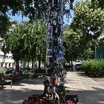 The Michael Jackson Tree