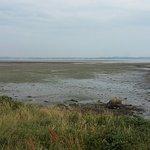 Strangford Lough mud flats