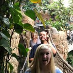 The rope bridge in Lied Jungle. It's very open and adventurous in this exhibit!