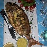 Photo of Gialia Restaurant