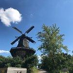 Windmill- Sanssouci