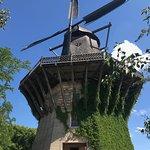 Windmill at Sanssouci