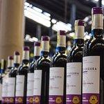 ¡Encuentra los mejores vinos en nuestra tienda a precios de distribuidor!