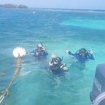 Billede af Paradise Scuba and Snorkeling Center