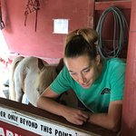 Friendly PONY ride attendant giving instructions at the Smoky Mountain Deer Farm