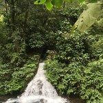 Parque Nacional Barranca del Cupatitzio照片