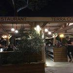 Photo of Terra Cotta