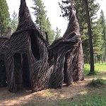Tree Circus (Patrick Dougherty).