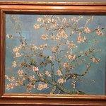Foto de Museu Van Gogh