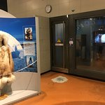 Nagoya City Science Museum의 사진