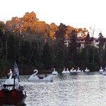 Pedalinhos (cisnes e barcos pirata)