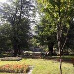 Фотография Парк влюбленных
