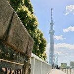 ことといばしと東京スカイツリー