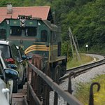 Train ride within the park, totally unexpected as you sit in your car and travel through the par