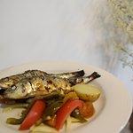 Sardinha Assada | Fresh Sardines
