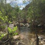 صورة فوتوغرافية لـ Sabino Canyon