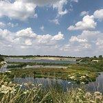 College Lake Nature Reserve Foto