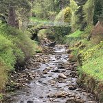 Stream in front of Blair Castle