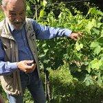 Tenuta founder and master vintner Giulio shares his vast knowledge.