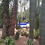 Photo of Jardin Majorelle