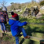 Kids enjoying themselves at Fota Wildlife Park, Cork
