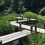 Missouri Botanical Garden의 사진