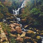 Φωτογραφία: Torc Waterfall