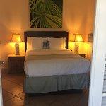 Peach palm room