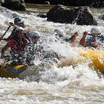 White water rafting on the French Broad River