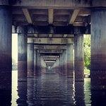 Φωτογραφία: Atchafalaya Basin Landing & Marina