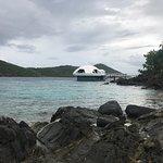 Foto di Coral World Ocean Park