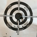 Defensive Shooting Skills-bild