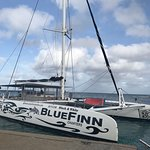 Photo of BlueFinn Charters