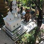 Foto de Parque Xcaret