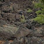 Walk in the Lava Field