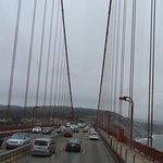 Steel Ropes Suspensing the bridge