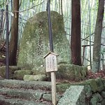 Photo of Kumano Kodo